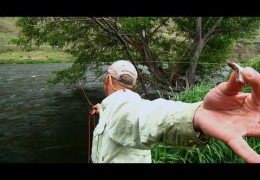 Sky High Salmonfly – Deschutes River Fishing