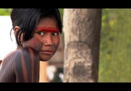 Kendjam – Heart of the Amazon. *Trailer*